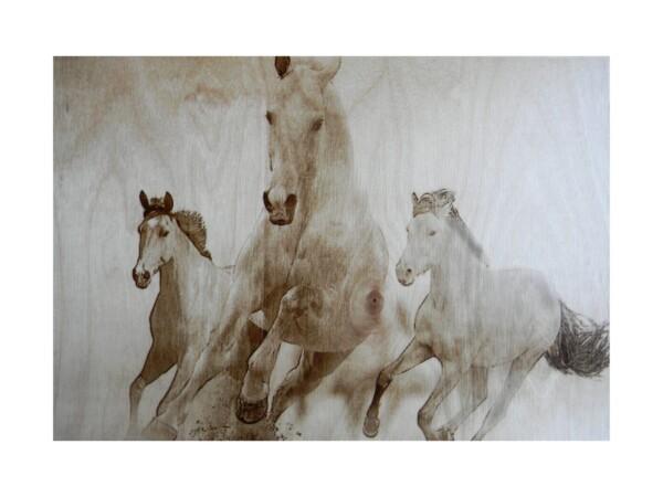 """Выжженная картина """"Лошади"""""""